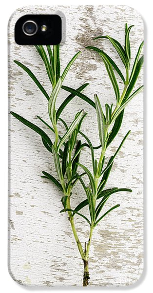 Fresh Rosemary IPhone 5 Case