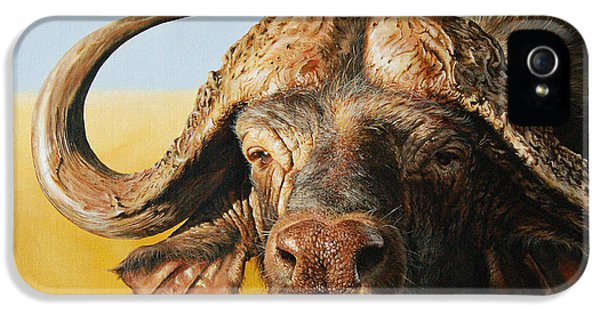 African Buffalo IPhone 5 Case by Mario Pichler