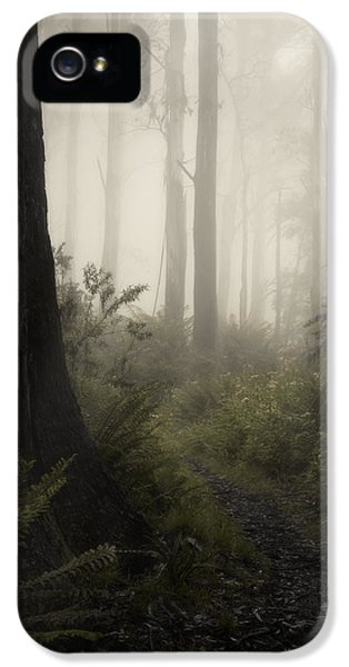 From Darkness IPhone 5 Case by Amy Weiss