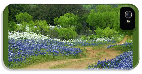 Bluebonnets iPhone 5 Case - From Here To There by Joe Jake Pratt