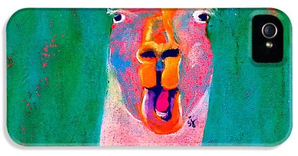 Funky Llama Art Print IPhone 5 Case
