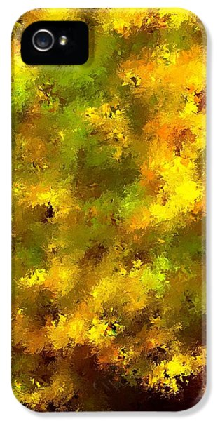 Garden Boss IPhone 5 Case by Terence Morrissey