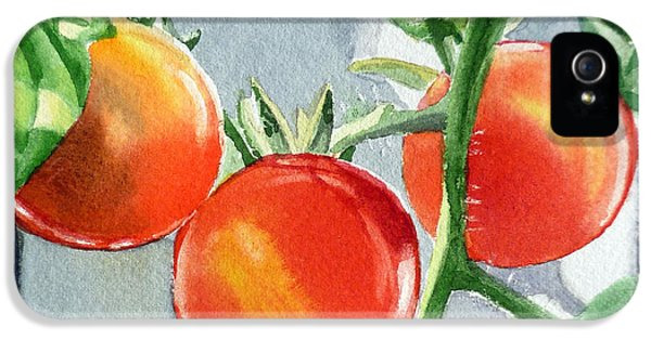 Garden Cherry Tomatoes  IPhone 5 Case by Irina Sztukowski