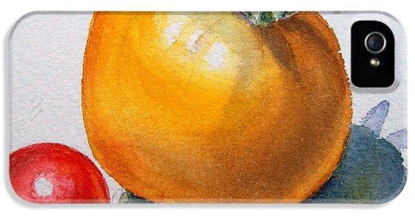 Garden Tomatoes IPhone 5 Case by Irina Sztukowski