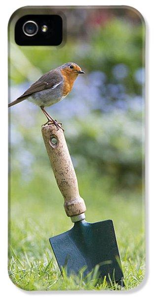 Garden iPhone 5 Case - Gardeners Friend by Tim Gainey