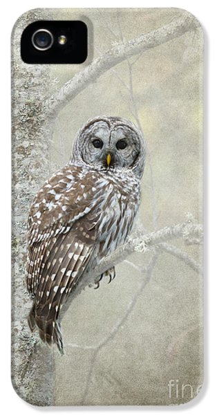 Guardian Of The Woods IPhone 5 Case by Beve Brown-Clark Photography
