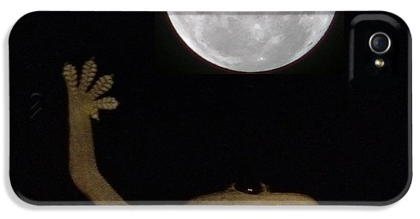 Gecko Moon IPhone 5 Case by Cameron Bentley