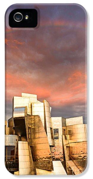 Gehry Rainbow IPhone 5 Case