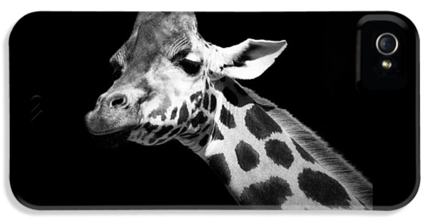 Portrait Of Giraffe In Black And White IPhone 5 Case