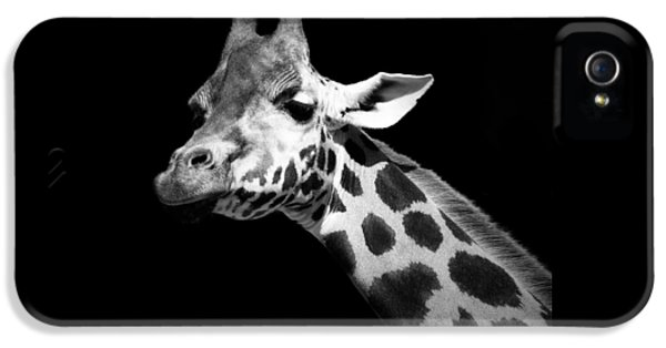 Portrait Of Giraffe In Black And White IPhone 5 Case by Lukas Holas