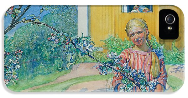 Girl With Apple Blossom IPhone 5 Case by Carl Larsson