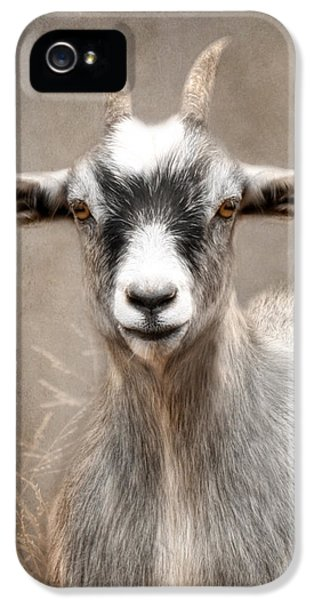 Goat Portrait IPhone 5 / 5s Case by Lori Deiter