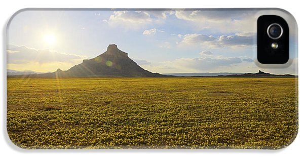 Golden Desert IPhone 5 Case