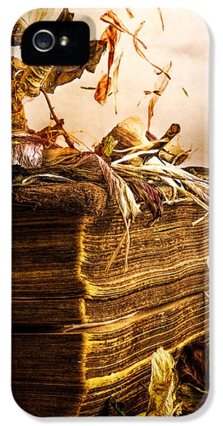 Golden Pages Falling Flowers IPhone 5 Case by Bob Orsillo