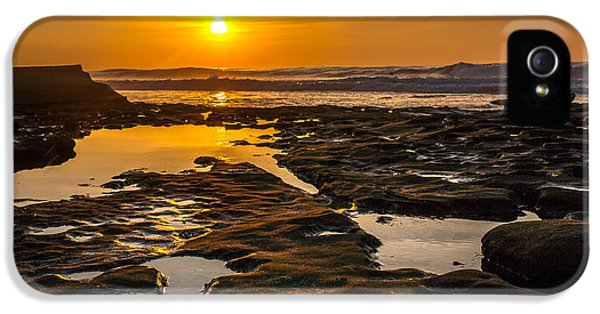 Golden Pools IPhone 5 Case