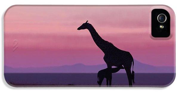 Good Morning Masai Mara 7 IPhone 5 Case