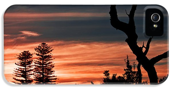 IPhone 5 Case featuring the photograph Good Night Trees by Miroslava Jurcik