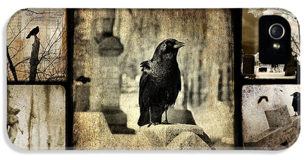 Blackbird iPhone 5 Case - Gothic And Crows by Gothicrow Images