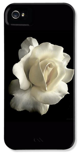 Grandeur Ivory Rose Flower IPhone 5 Case