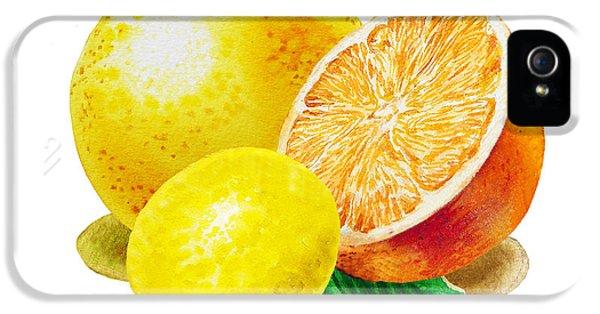 Grapefruit iPhone 5 Case - Grapefruit Lemon Orange by Irina Sztukowski