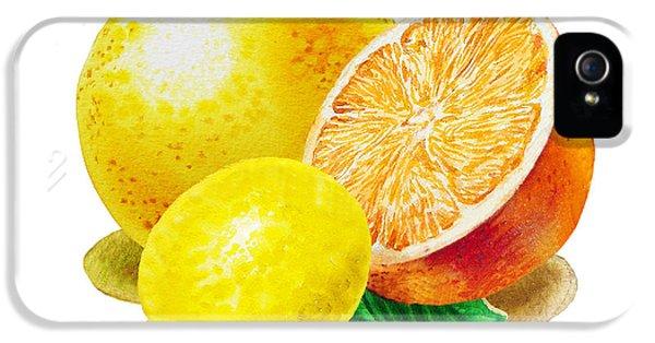 IPhone 5 Case featuring the painting Grapefruit Lemon Orange by Irina Sztukowski