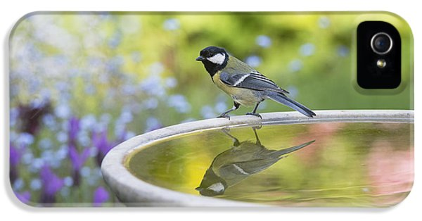 Great Tit Reflection  IPhone 5 Case by Tim Gainey