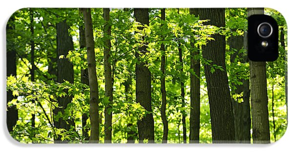 Green Spring Forest IPhone 5 Case