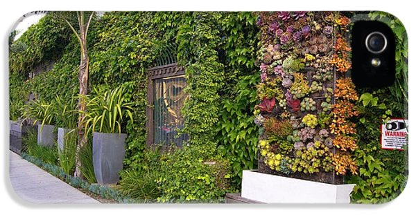 Green Wall In Los Angeles IPhone 5 Case