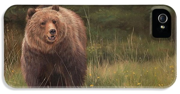 Grizzly IPhone 5 Case by David Stribbling