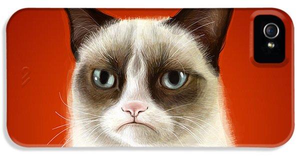 Cat iPhone 5 Case - Grumpy Cat by Olga Shvartsur