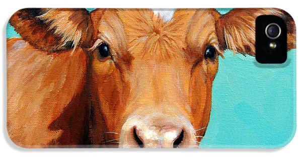 Cow iPhone 5 Case - Guernsey Cow On Light Teal No Horns by Dottie Dracos