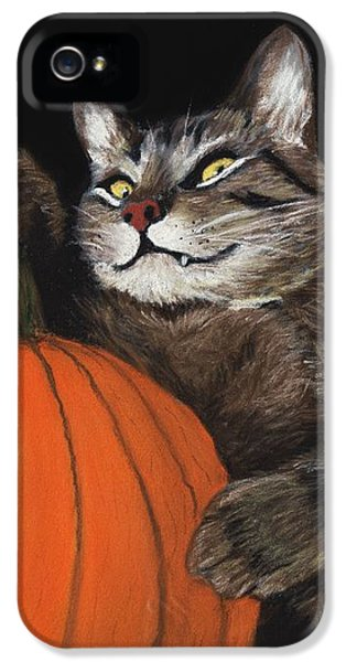 Halloween Cat IPhone 5 Case by Anastasiya Malakhova