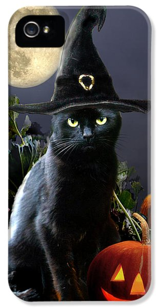Witchy Black Halloween Cat IPhone 5 Case