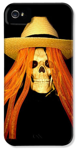 Halloween Skull Border IPhone 5 Case by Barbara Snyder