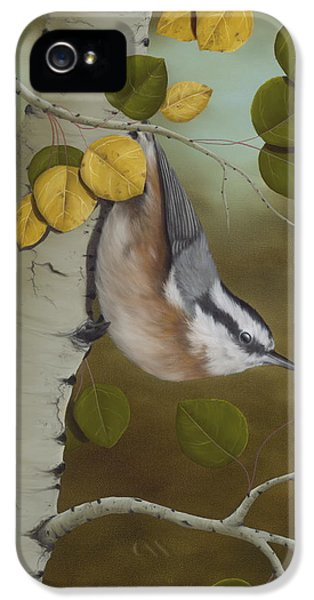 Animal iPhone 5 Case - Hanging Around-red Breasted Nuthatch by Rick Bainbridge