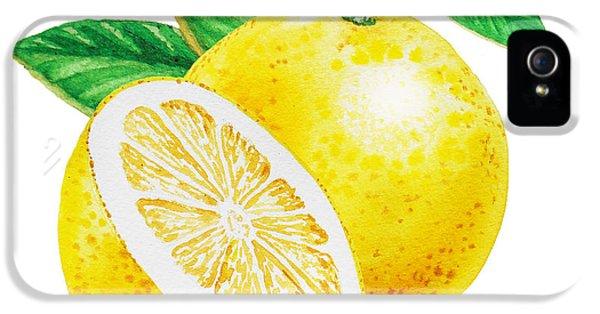 Happy Grapefruit- Irina Sztukowski IPhone 5 Case