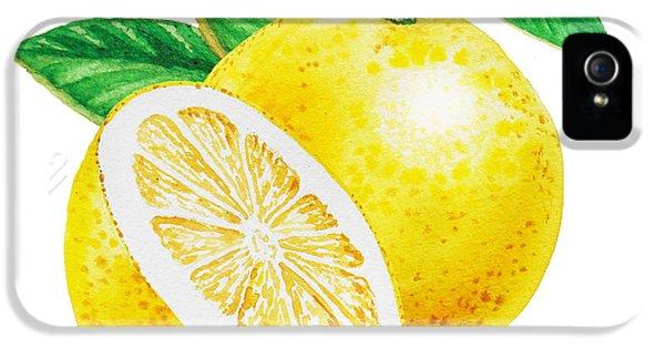 IPhone 5 Case featuring the painting Happy Grapefruit- Irina Sztukowski by Irina Sztukowski