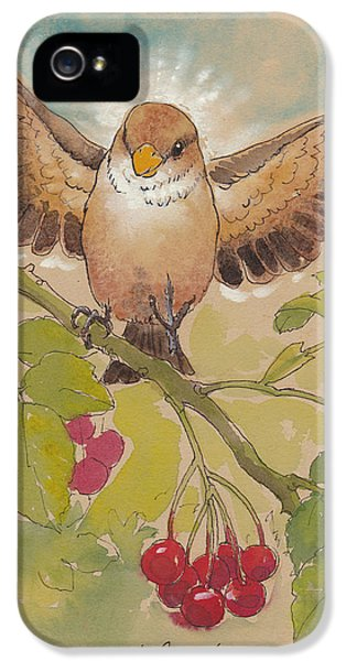 Happy Sparrow Number Four IPhone 5 Case by Tracie Thompson