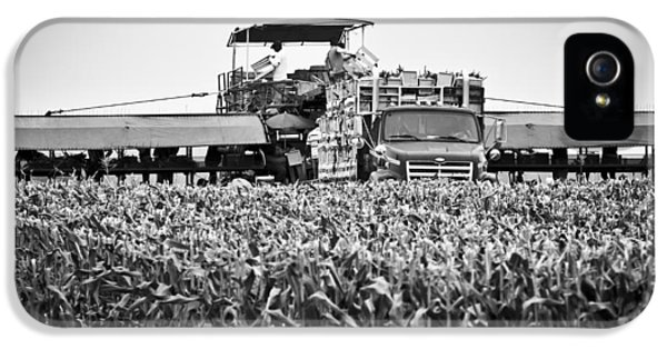 IPhone 5 Case featuring the photograph Harvesting Time by Ricky L Jones