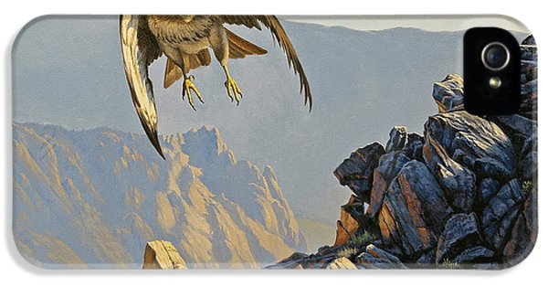Hawk iPhone 5 Case - Hawk Above Beartooth Pass by Paul Krapf