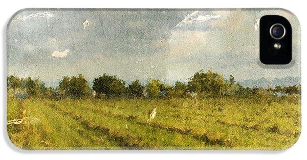 Hay Fields In September IPhone 5 Case by Brett Pfister