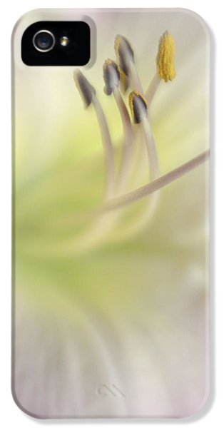 Heart Of A Day Lily IPhone 5 Case by David and Carol Kelly