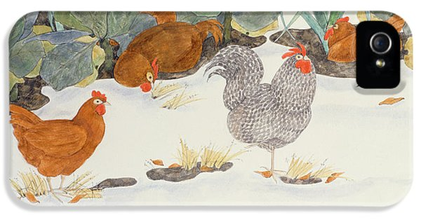 Chicken iPhone 5 Case - Hens In The Vegetable Patch by Linda Benton