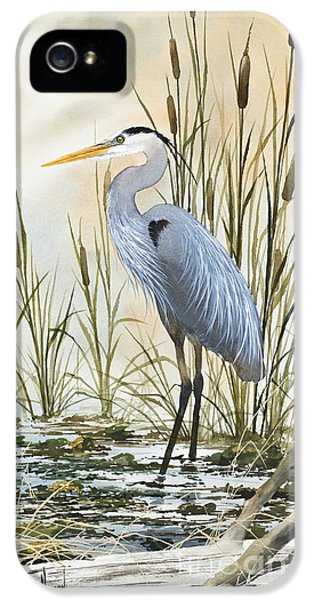 Heron iPhone 5 Case - Heron And Cattails by James Williamson