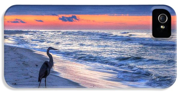 Heron On Mobile Beach IPhone 5 Case by Michael Thomas