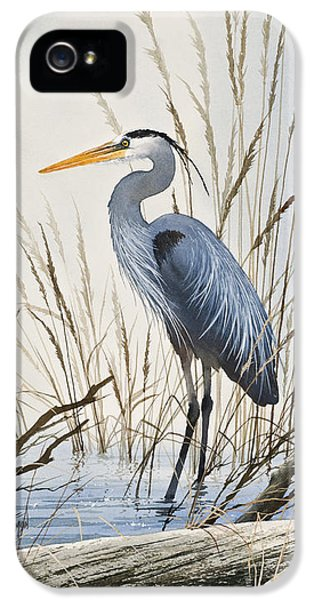Heron iPhone 5 Case - Herons Natural World by James Williamson
