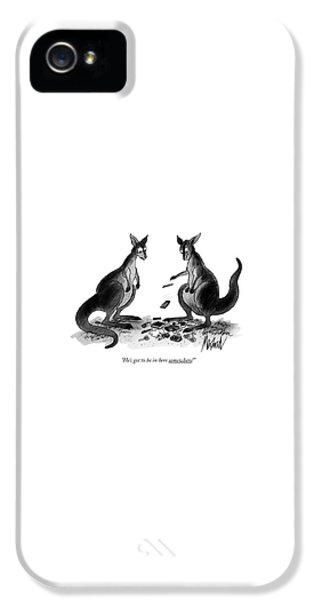 Kangaroo iPhone 5 Case - He's Got To Be In Here Somewhere! by Kenneth Mahood
