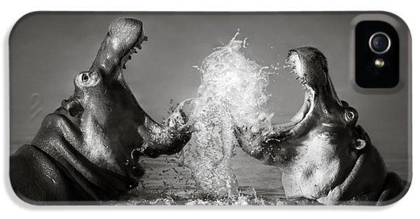 Hippo's Fighting IPhone 5 Case by Johan Swanepoel
