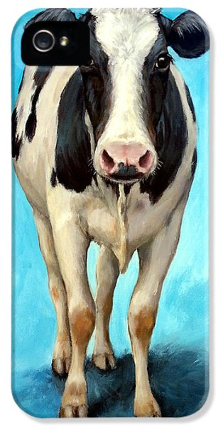 Holstein Cow Standing On Turquoise IPhone 5 Case by Dottie Dracos