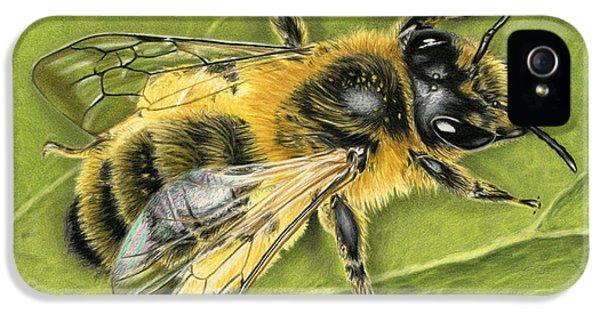 Honeybee On Leaf IPhone 5 Case